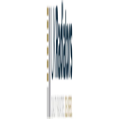Typhon - Black Vertical Radiator - H1800mm x W408mm - Double Panel